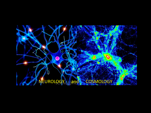 neurology-cosmology